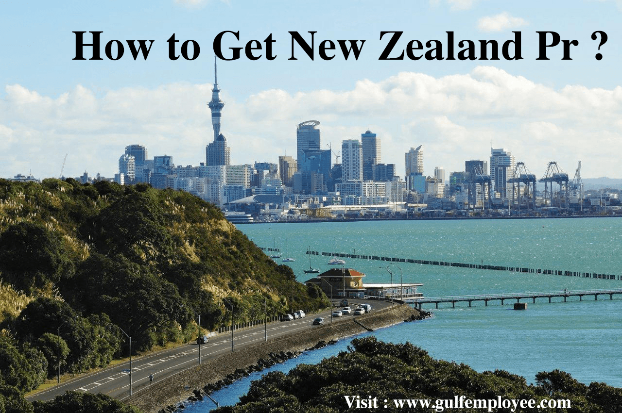 How to Get New Zealand PR From India