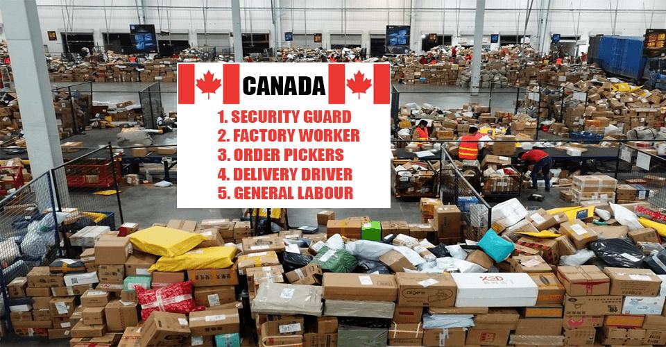 Urgent Job in canada