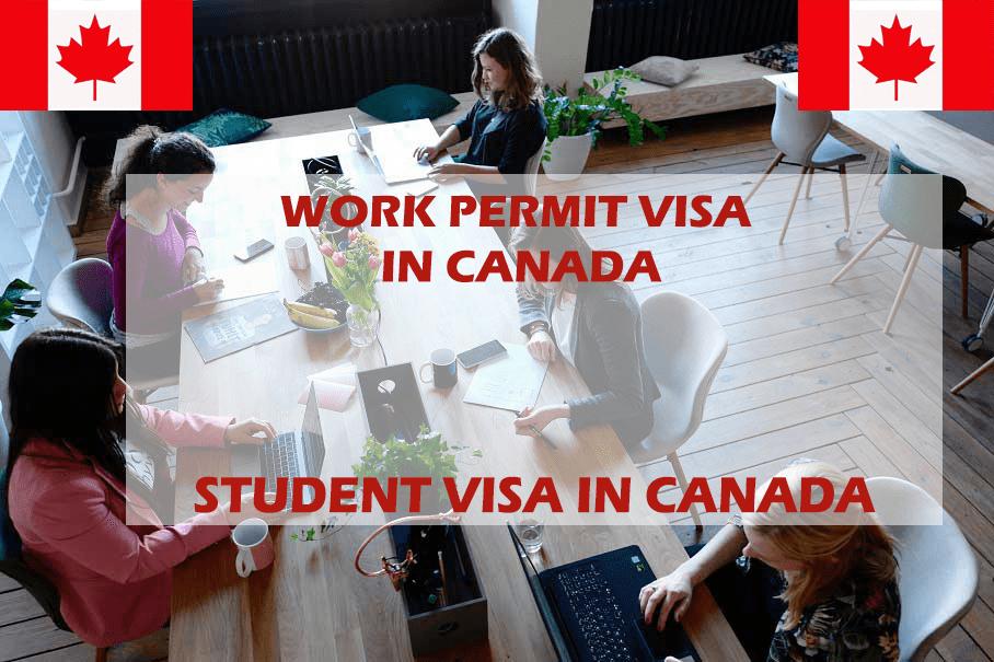 Canada study permit:
