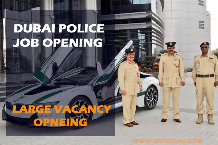 Dubai police Career